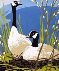 Canada Geese, by AJ Casson