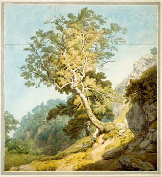 —View near Camonteign, Devon (detail), by John White Abbott (1764-1851), 1803