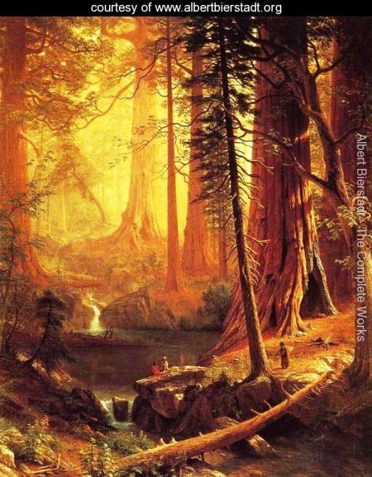 Giant Redwood Tress of California, by Albert Bierstadt