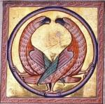 birdf44v