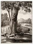 Wenceslas_Hollar_-_The_fox_and_the_cat_2