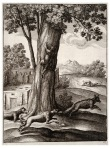 Wenceslas_Hollar_-_The_fox_and_the_cat_2