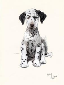1047-cecil-aldins-dogs