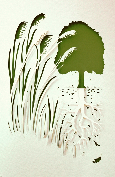 Aesop's Fable: The Oak and the Reeds
