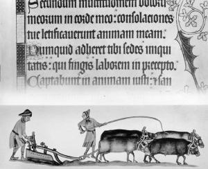 """  MEDIA FOR: serfdom """"Luttrell Psalter"""" """"Luttrell Psalter"""" Two serfs and four oxen operating one medieval agricultural plow, 14th-century illuminated manuscript, the Luttrell Psalter."""