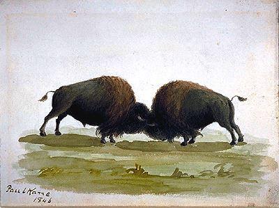 Paul Kane, 1846