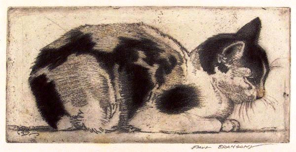 Cat by Paul Bransom