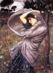 boreas-1903_jpg!HalfHD