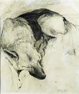 andrew-wyeth-german-shepherd