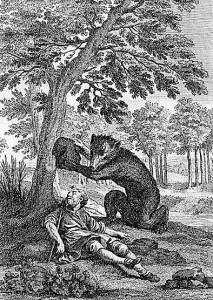 ours-amateur-de-jardins