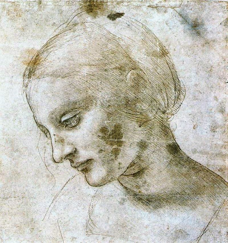 800px-Leonardo_da_Vinci_-_study_of_a_woman's_head