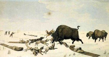 The Buffalo Hunt by Peter Ridinsbacher (Micheline Walker)
